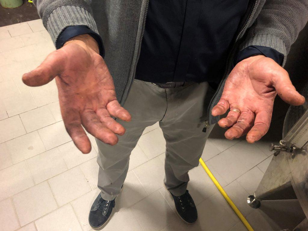 mani di luca archetti
