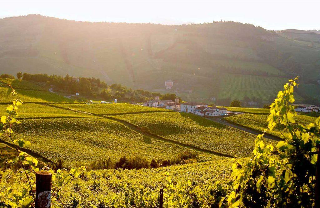 Borgo condè wine resort